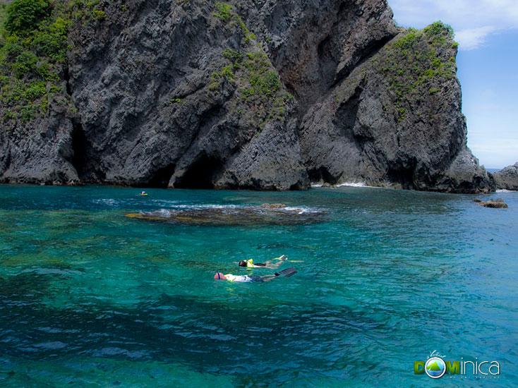 Scuba Dive & Snorkel