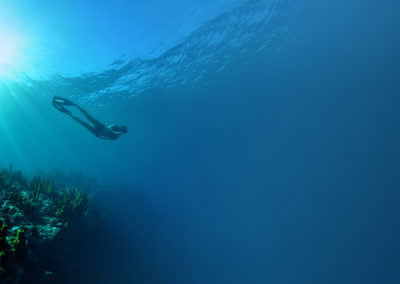 Freediving in Dominica