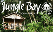 Jungle Bay