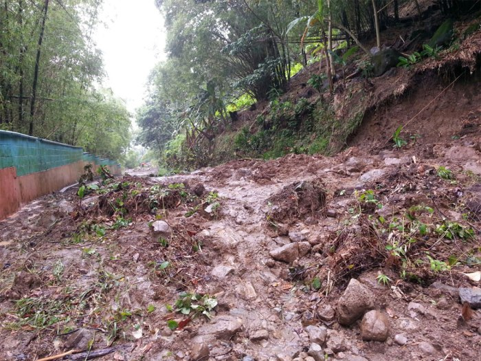 One of the many landslides blocking the way out of Trafalgar, Shawford and Laudat